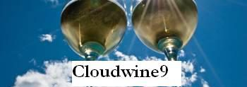 Cloud wine 9, il blog di Adriano Guerri