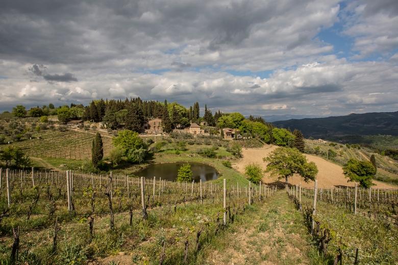 Photogallery-Vecchie-Terre-di-Montefili_10.jpg