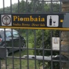 Piombaia- Montalcino