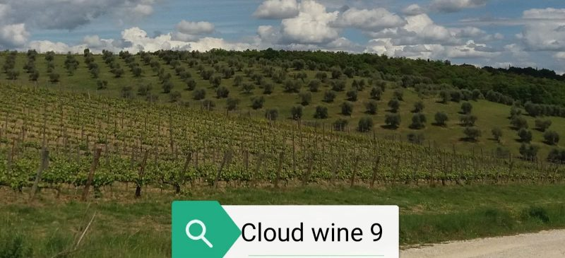 Adriano Guerri in Cloudwine9
