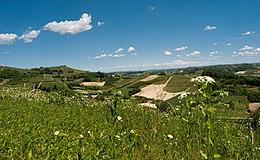 260px-Colline_del_Roero_(Piemonte,_Italia)