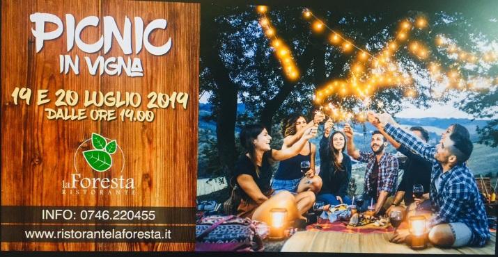 PICNIC IN VIGNA 19-20 LUGLIO RIETI 2019.jpg