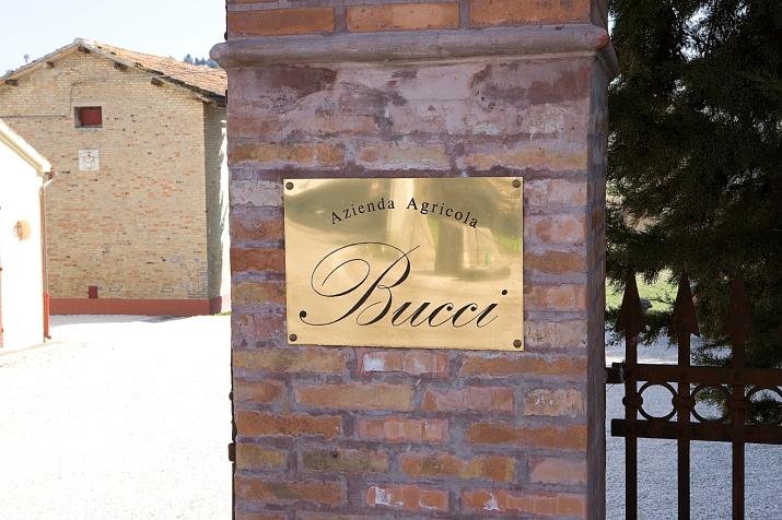 villa bucci.jpg
