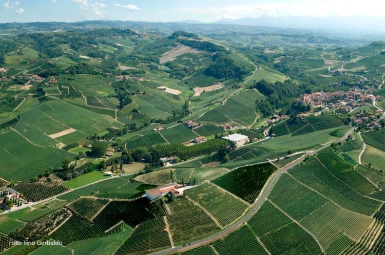 6-Fratelli-Borgogno-views-of-Cannubi-Vineyard-1